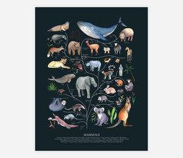 Tree of Life: Mammals (Dark)
