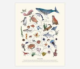 Tree of Life: Sea Life (Beige)