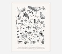Tree of Life: Sea Life (Black and White)