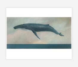 Descend (Humpback Whale)