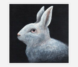 Rabbit Night