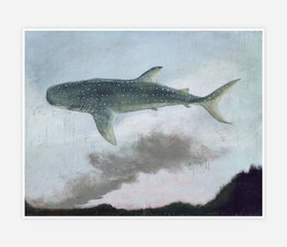 Whale Shark, Forest