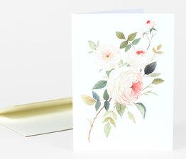 A Rose for William Morris