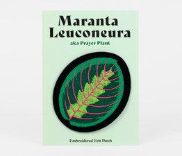 Maranta Leuconeura