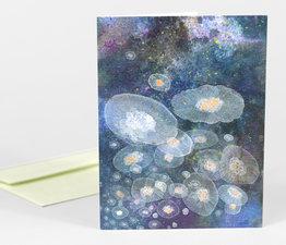 Shrimp Lovers (Moon Jellies)