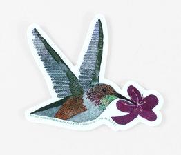 Rufous Hummingbird with Fireweed