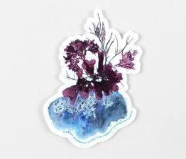 Seaweed & Barnacles