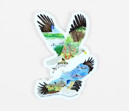 Bald Eagle Islands