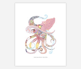 The Pacific Octopus Shoreline