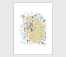 Health Lichen