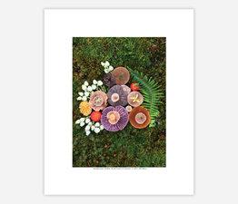 Mushroom Medley with Ferns & Fairies
