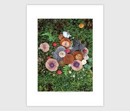 Mushroom Medley with Helvella Heart