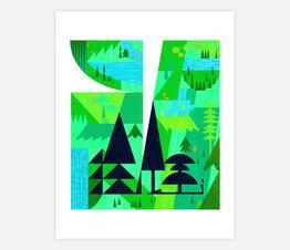 Shapey Tillamook Forest