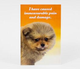 Immeasurable Pain