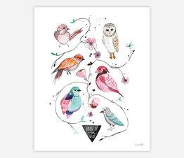 Birds of the Wild