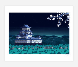 Japanese Castle at Night