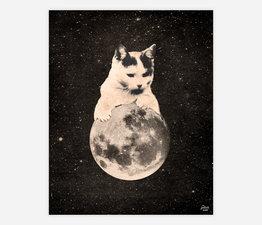 Mooncat No. 2